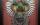 variegated turkey shadow box